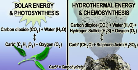 chemical reaction chemosynthesis Alternatively, in most oceanic environments, energy for chemosynthesis derives from reactions in which substances such as hydrogen sulfide or ammonia are oxidized.