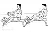 Seated Rowing v/s Chest Supported Rowing (Vertical Row)-seated_low_cable_row.png