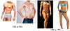 Body Fat Percentage Pics of Men & Women-male-female-different-body-type.png