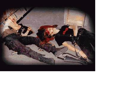 Columbine video game upsets victim's father