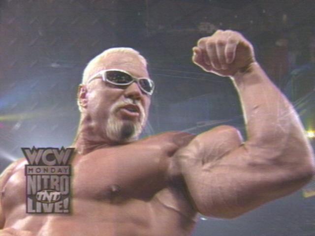 Scott Steiner Biceps