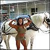 10 hottest female Bodybuilders (other than my wife)-denisemasinofo_dmasinonycpark072%5B1%5D.jpg
